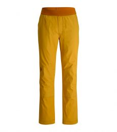 Notion Pants Front Gold